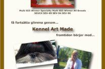 Ad Bulletinen, No. 3 2010