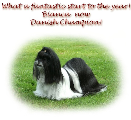 Bianca Danish champion