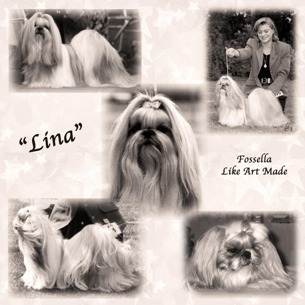 Lina memory lane2