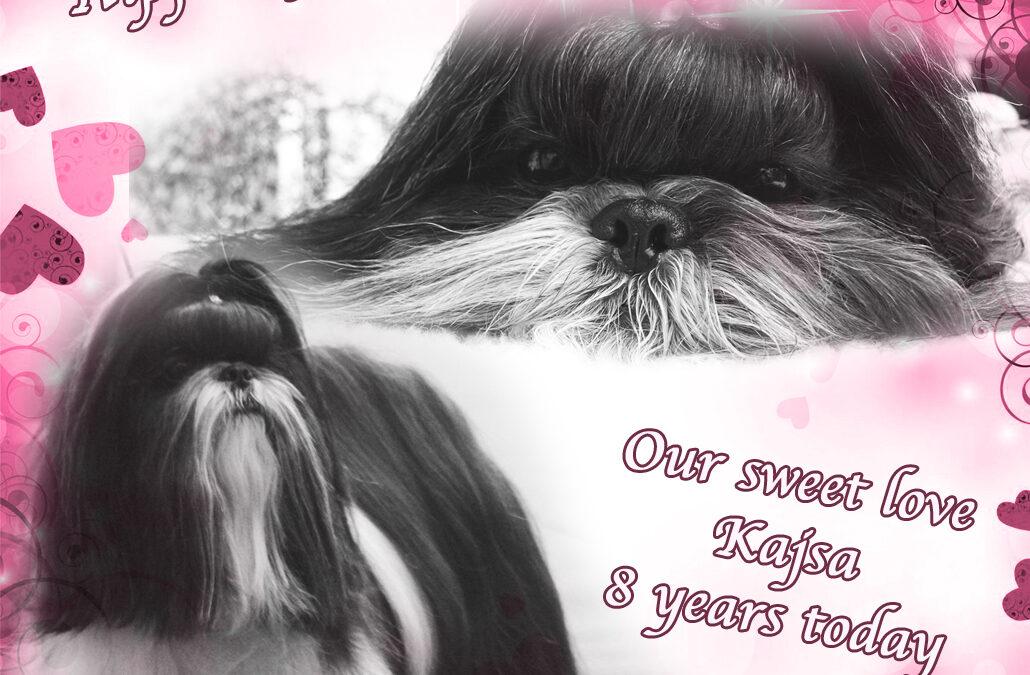 Happy Birthday Kajsa!