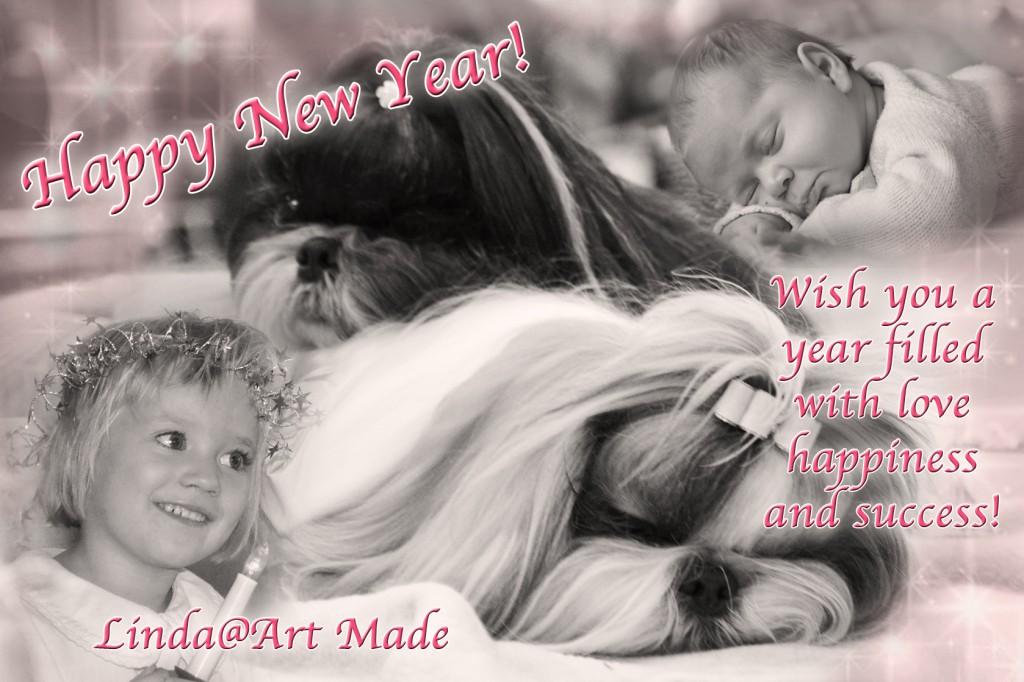 20121231 Nyårskort