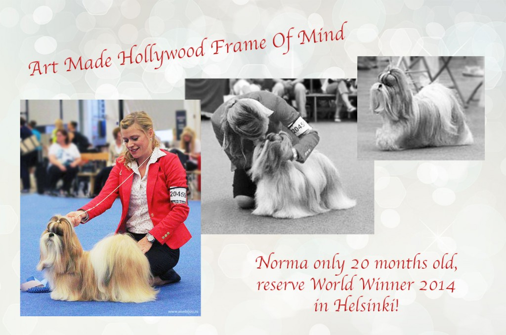 201408 Norma WDS