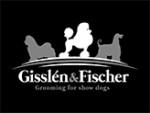 http://www.gisslenfischer.se