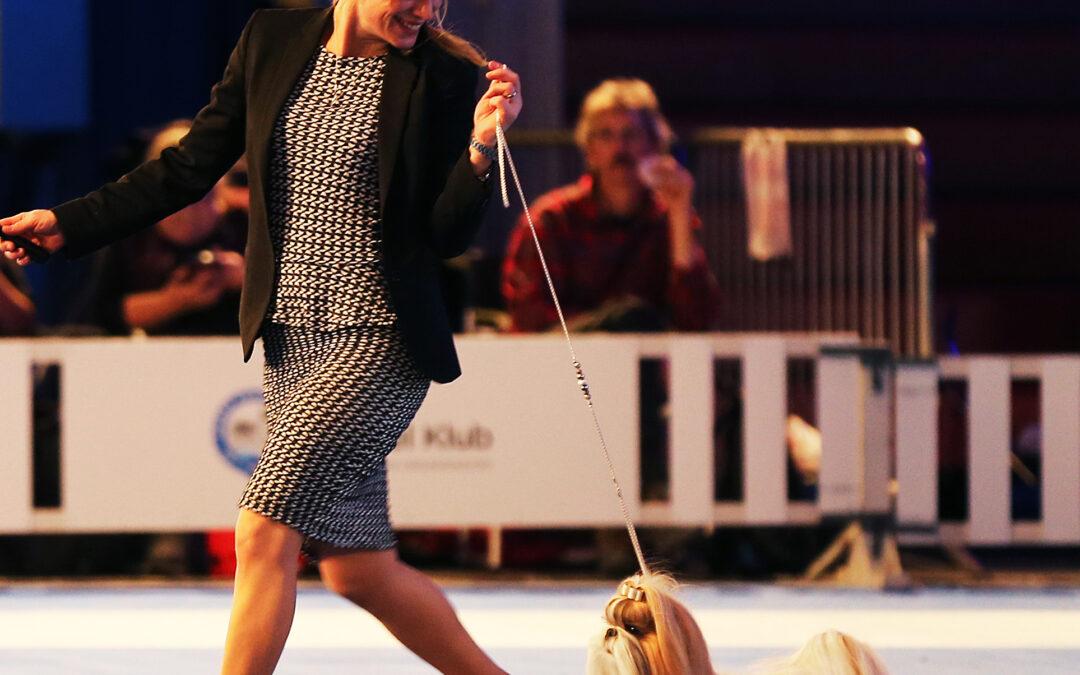 Norwegian Winner Show – pics of Norma in the BIS – final!